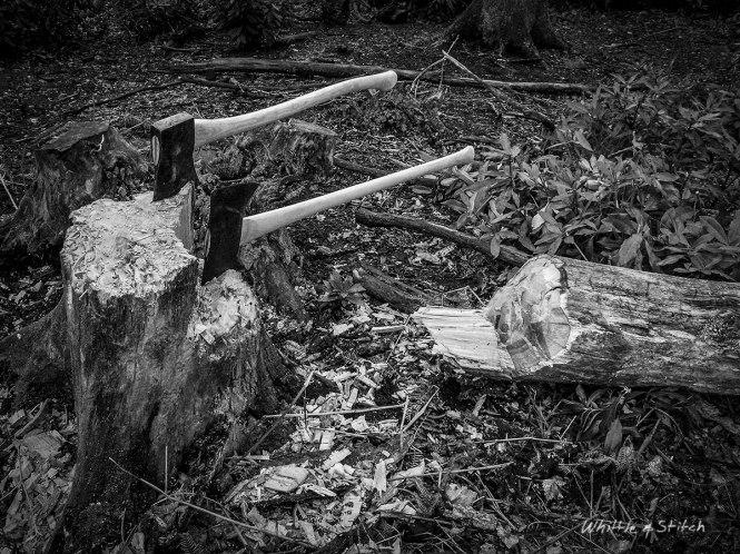 two axes in stump of felled Oak Tree. Monochrome Landscape. © P. Maton 2014 whittleandstitch.net